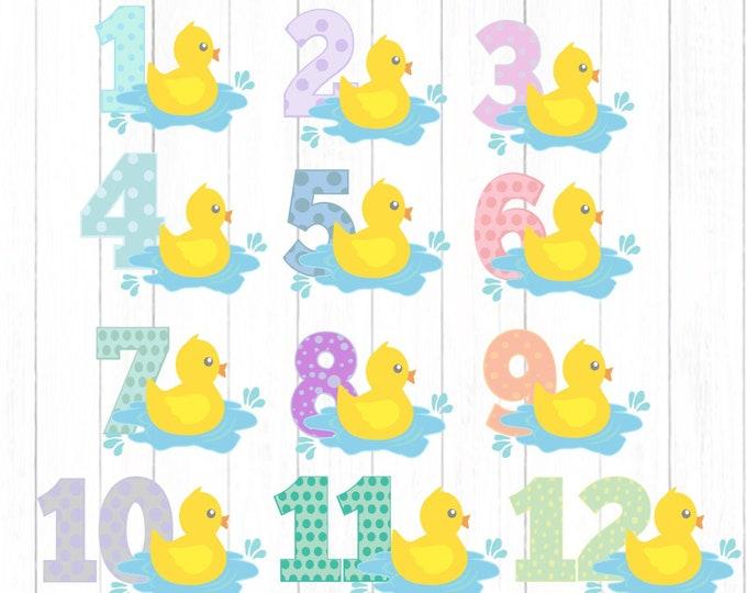 Baby monthly milestone svg,1-12 Months Duckling SVG Nursery Baby Shower Svg, Eps, Dxf, Png Cut file Sublimation Print Clipart digital design