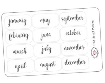 T163 || 12 Script Month Stickers