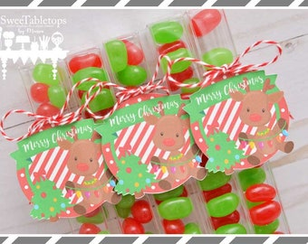 reindeer party favors jelly bean tubes candy favors kids party favors