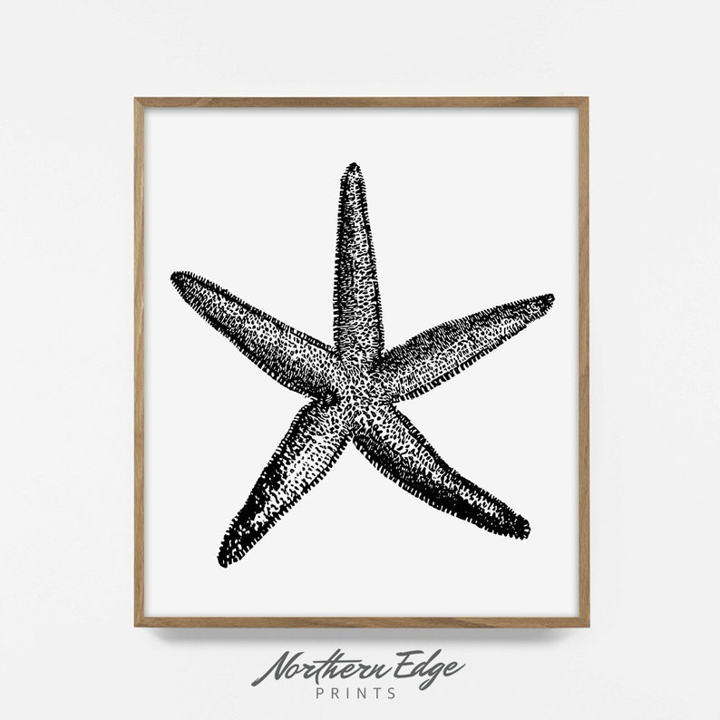picture about Starfish Printable known as starfish, printable print, tropical, seashore, summertime posters, starfish artwork, décor, innovative poster, printable poster, artwork, electronic down load