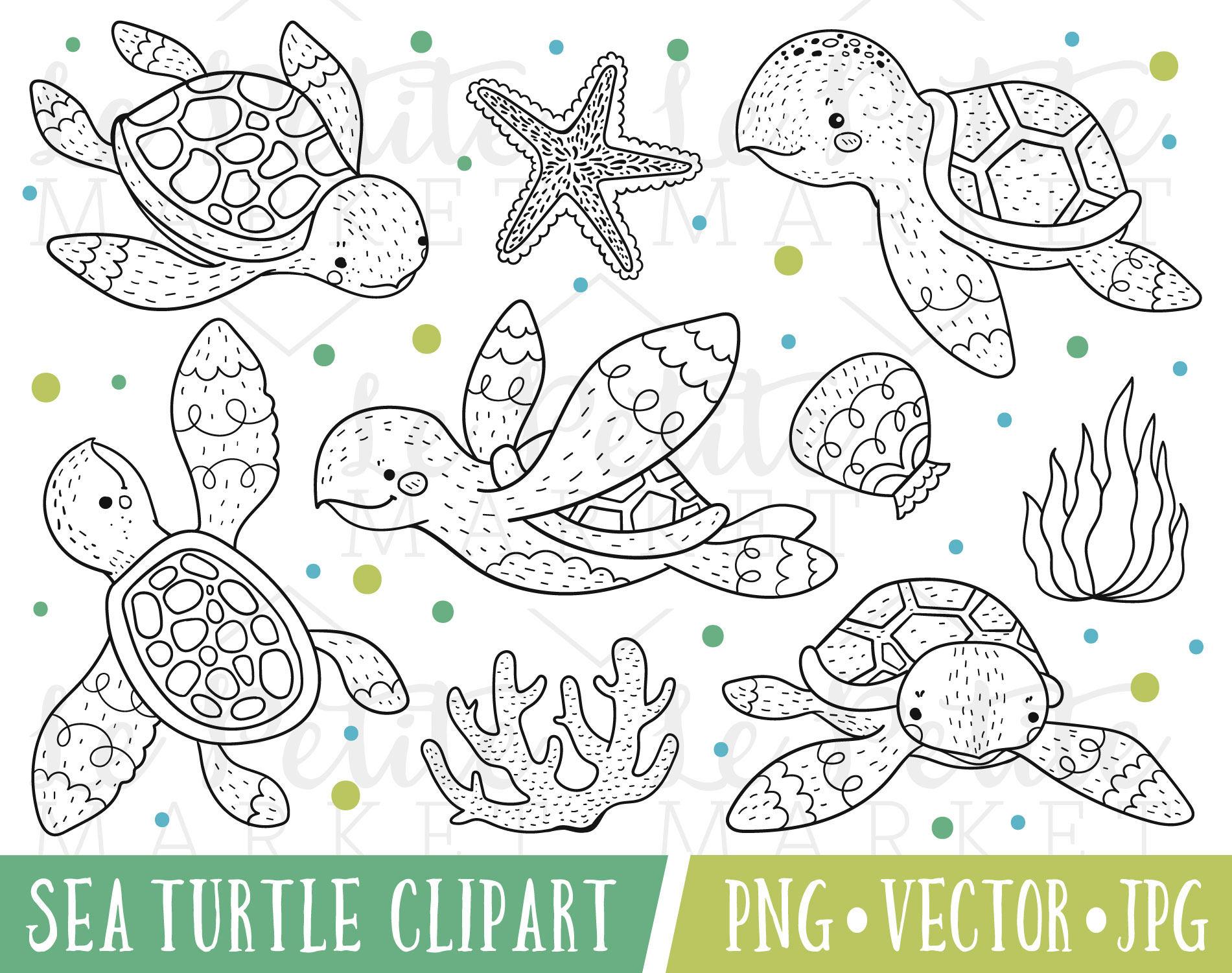 Linda tortuga conjunto Clipart ilustraciones de tortugas   Etsy