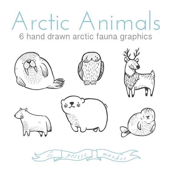 Conjunto de lindo Doodly dibujado a mano ilustraciones de | Etsy