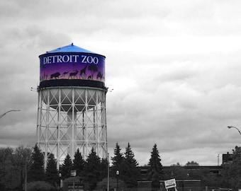 Detroit zoo Etsy
