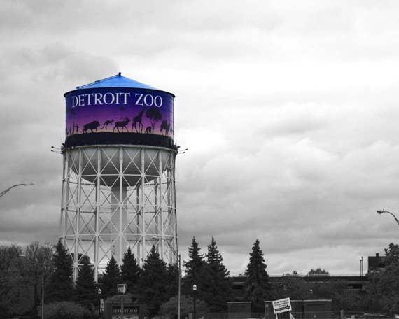Detroit Zoo Water Tower Michigan Photography Prints Etsy