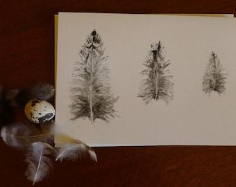 Greeting card - Three Ibis feathers