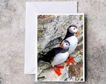 Greeting Card Puffins, Original Puffins Print, Bempton Cliifs, Blank Card, Birthday Card, Christmas Card