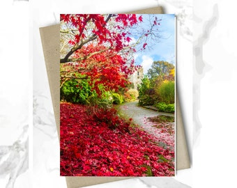 Greeting Card | Autumn in Grasmere | Colours of Nature | UK Lake District | Blank Card | Birthday Card | Greeting Card | Christmas Card