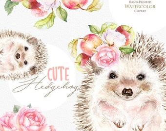 Hedgehog, Cute Little Animals, Watercolor clipart, Nursery Animal Print, Floral, Apples, Forest animals, Babies portrait, Nursery art, png