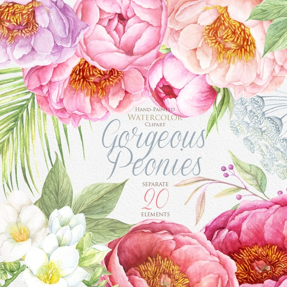 Peonies watercolor flowers clipart boho hand painted etsy image 0 m4hsunfo