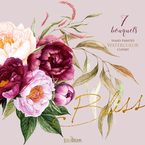 Hand painted Peonies flower clipart floral elements Watercolor floral Wedding invitation Peony clipart Watercolor Botanical