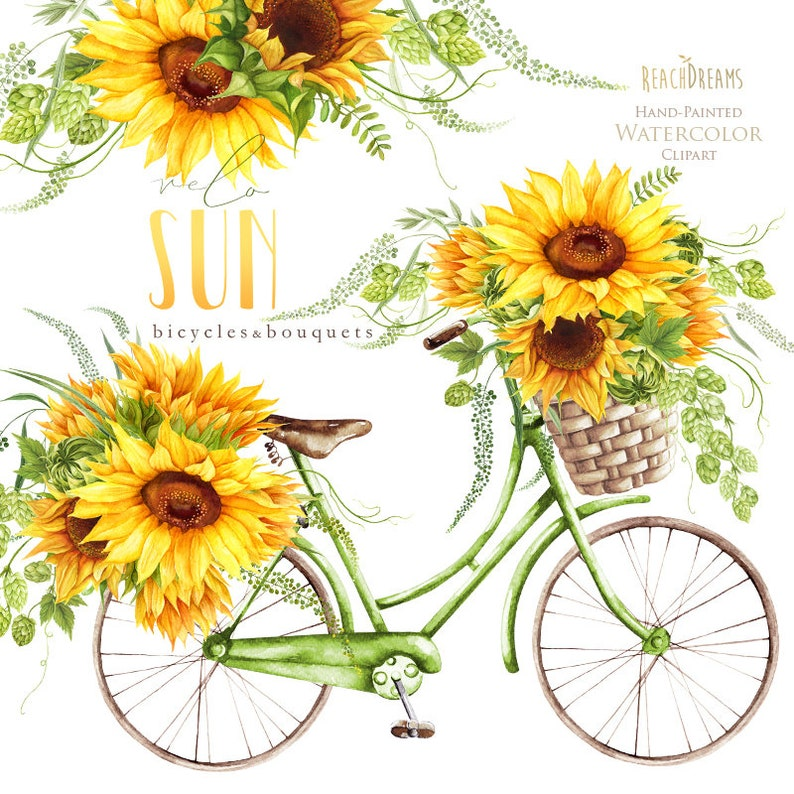 Sunflower Watercolor Flower clipart vintage bicycle velo ...