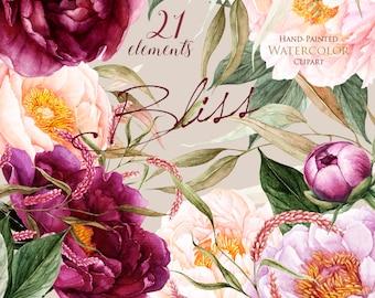 Peonies Flowers Watercolor, Floral elements, Burgundy, Violet, Peach, Botanical, Boho clipart, Hand Painted Wedding Clip art, Digital png