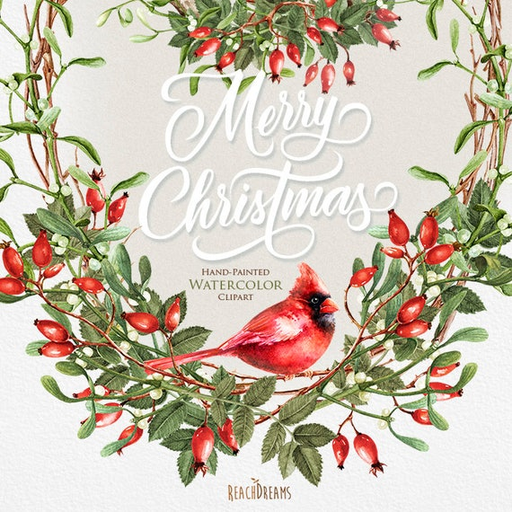 Christmas Cardinals Clipart.Watercolor Christmas Clipart Mistletoe Briar Red Cardinal Holiday Hand Painted Decoration Invitations Merry Christmas Greeting Card