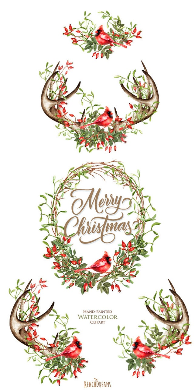 Watercolor Christmas Clipart Mistletoe Briar Red Cardinal Etsy