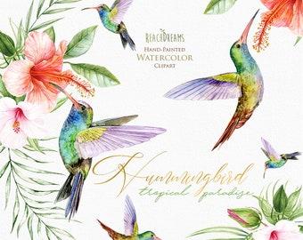 Hummingbirds, watercolor clipart, exotic birds, tropical leaves, hummingbird png, green leaves, wild bird, invitations, garden, paradise