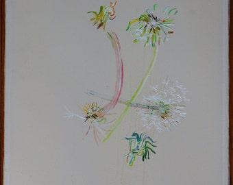 Dandelions; green, blue, white, pink