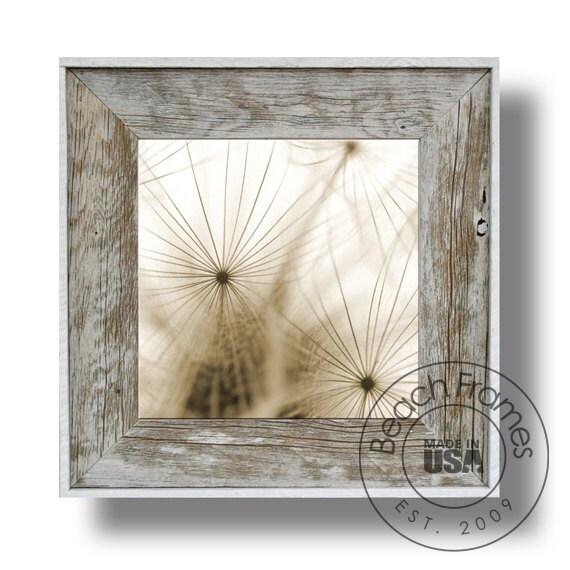 Set of 3 Dandelion Canvas Artwork Collage 21 x 21\