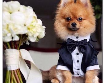 Wedding tuxedo for dogs Formal dog tuxedo Custom made dog suit Luxury dog outfit Customized dog suit Birthday dog costume Dog wedding attire