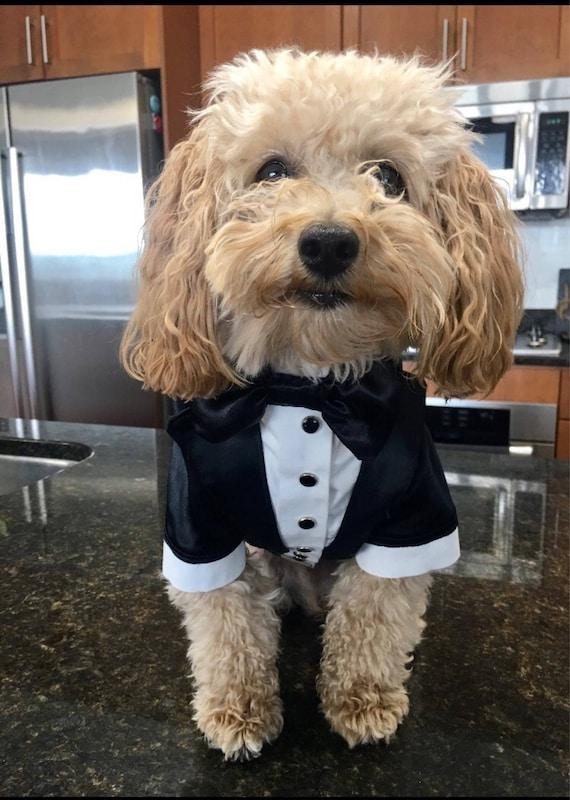 Wedding tuxedo for dogs Formal dog tuxedo Custom made dog suit Shiny  wedding attire for dog