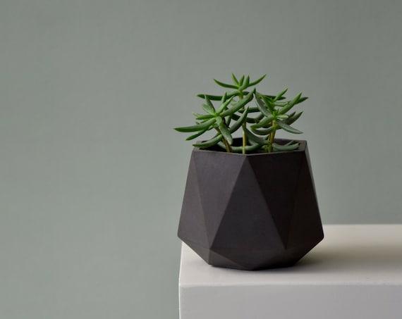 HORTUM 6ø | Concrete Planter - Plant Pot - Desk Plant - Diameter 6cm  (2 inch)