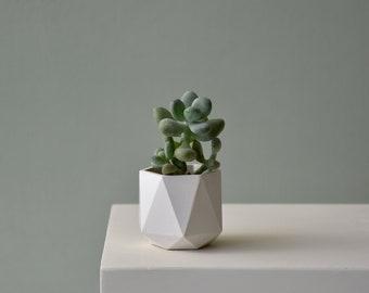 HORTUM 3.5Ø   Concrete Planter - Plant Pot - Diameter 3.5cm  (1 inch)