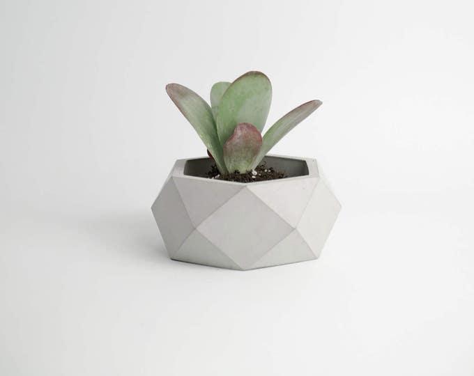 ORE | Gray Concrete Succulent Planter
