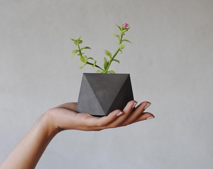 Forma | Small Concrete Succulent Planter