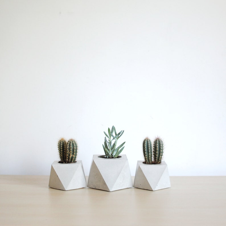 FORMA  Concrete Succulent Planter  set of 3 image 0