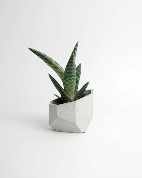 ALIUM | Concrete Succulent Pot - Planter - Vase