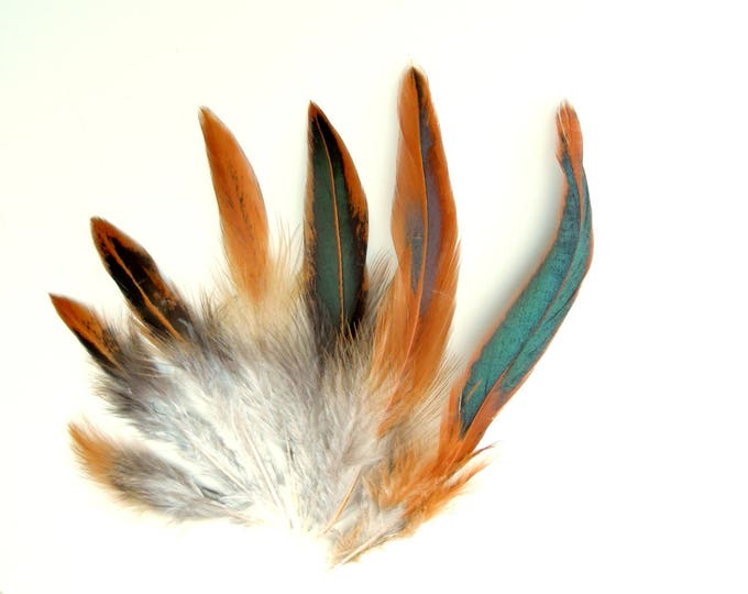 20 Brown natural feathers with green reflections, Real feathers rust  brown,  Earthy boho craft feathers for jewellery 4-7 inch