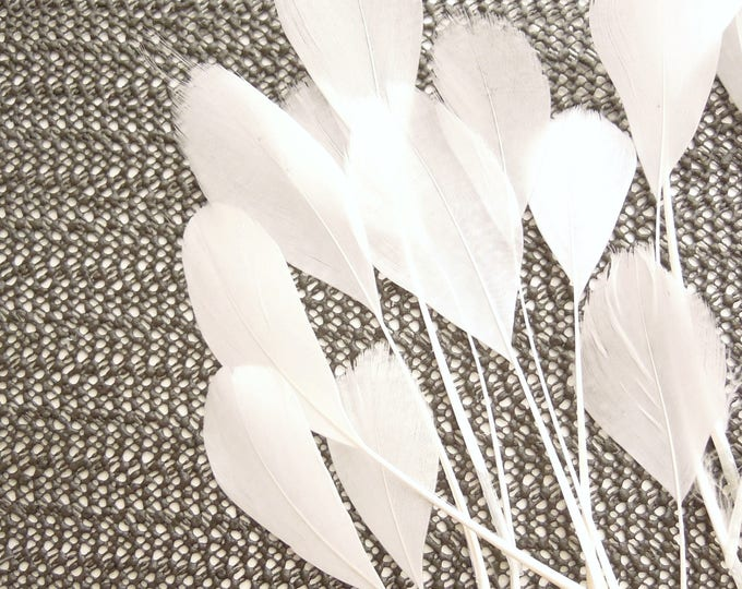 10 WHITE coque tail stripped feathers, White eyelash feathers 11-18 cm, Trimmed white coque feathers