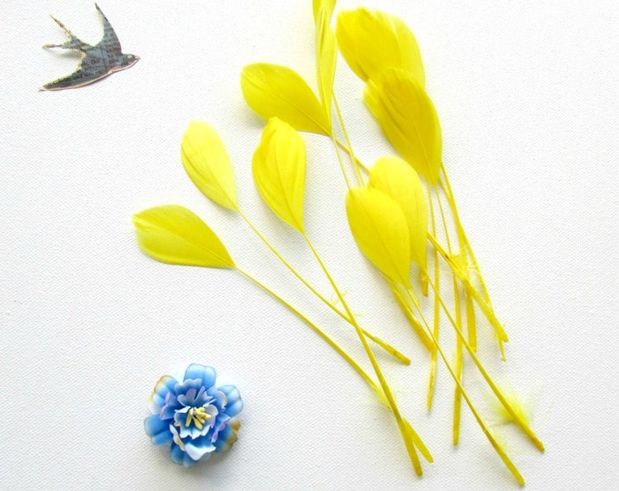 12 Yellow loose stripped coque feathers, Canary yellow eyelash quills, Milinery feathers 14-18 cm, Boutonnieres, Hats, Brooches, Jewellery