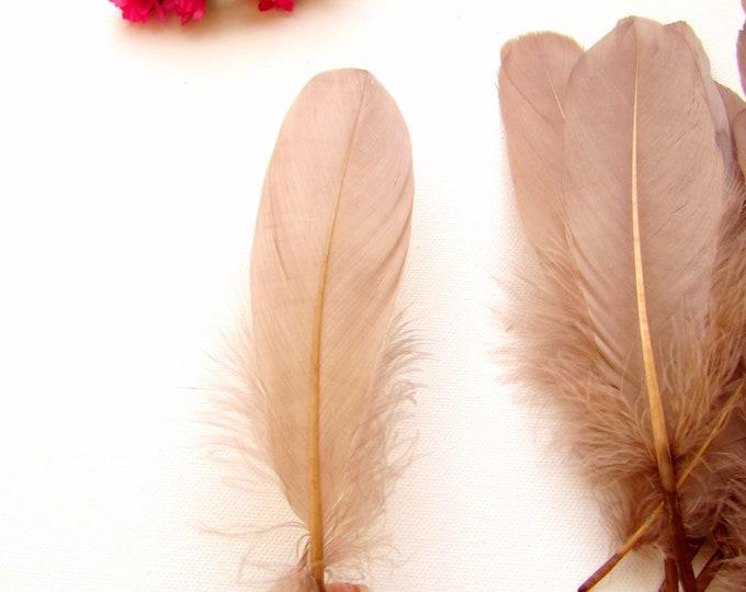10 Medium brown feathers 5-7 inch, Mid-brown bird feathers, Mocha brown feathers, Natural feathers, Boho crafts, Dreamcatcher DIY