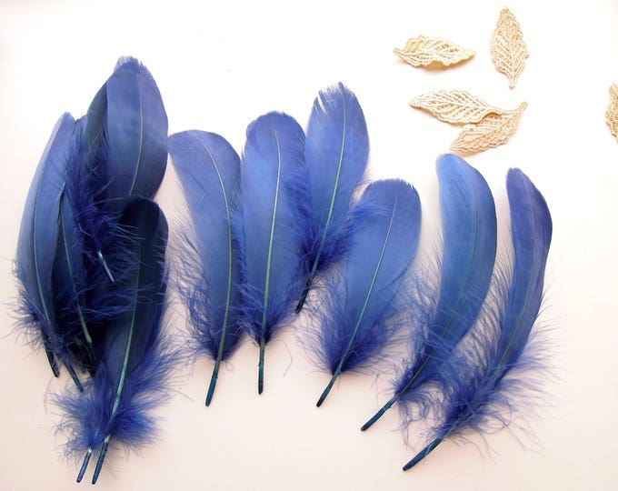 10 Blue feathers 5-6 inch  Empire blue quills  Indigo blue bird feathers  Blue quills  Real blue feathers