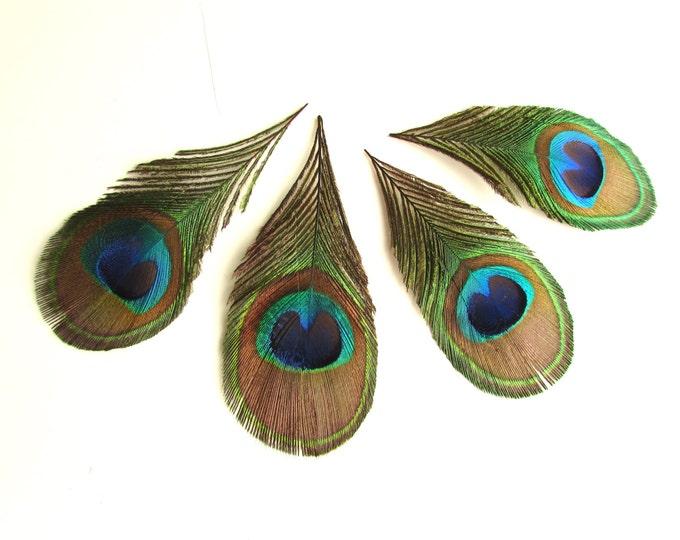 4 Peacock eye feathers - Real peacock feathers - Peacock feathers for earrings - Trimmed peacock feathers - Boho feather earrings - Bohemian
