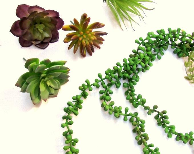 5 Fake succulent plants, Artificial sedum garden, DIY terrarium, Faux succulent set of 5 plants, Faux plants, Echeveria, Senecio, Tillandsia