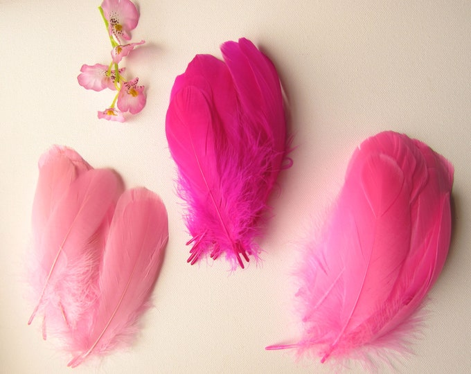 10 Pink Feathers Blush pink feathers Pink quills for dreamcatchers and crafts Real Feathers
