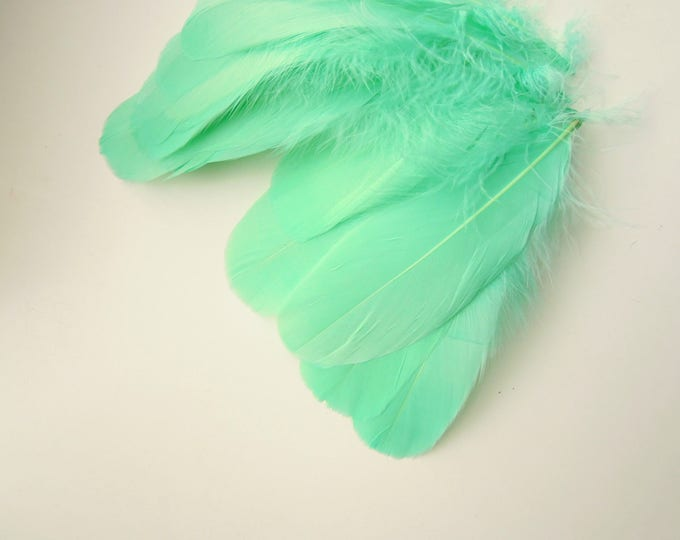 10 Aqua green feathers 5-6 inch - Turquoise bird feathers - Teal quills -  Pastel green feathers - Natural feathers - Craft feathers