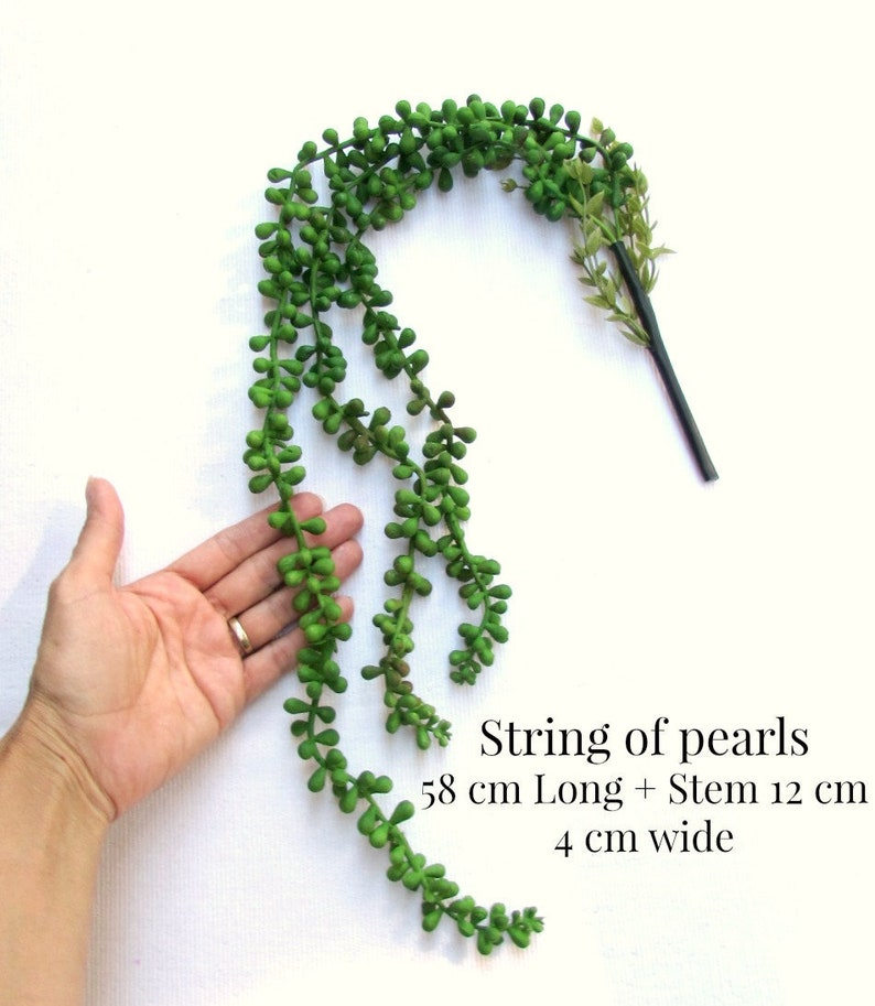 String Of Pearls Artificial Plant Succulent Trailing Plant Etsy