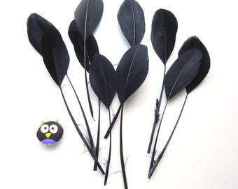 10 pcs BLACK stripped feathers. Black coque tail feathers. Long black feathers. Trimmed black feathers. Loose black feathers 8-12cm.