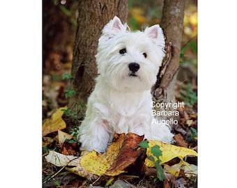 Westie Flag, Westie Gift, Westie Art, Westie, Westhighland White Terrier