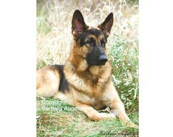 German Shepherd Flag, German Shepherd Gift