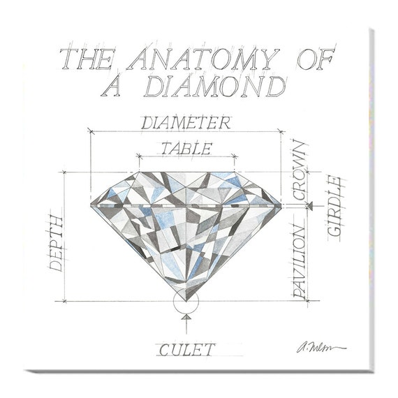 The Anatomy of a Diamond Watercolor Rendering printed on | Etsy
