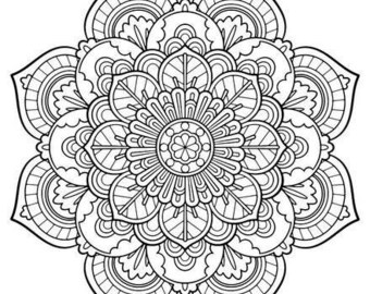 Camera Instant Download Adult Coloring Pages Digital Etsy