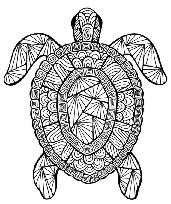 Schildkröte Instant Download Erwachsene Malvorlagen | Etsy