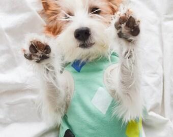 Dog Clothes Dog Hoodie / Diamond