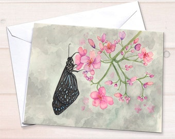 Black Butterfly cards