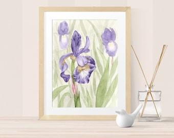 Floral Art – Iris Watercolor