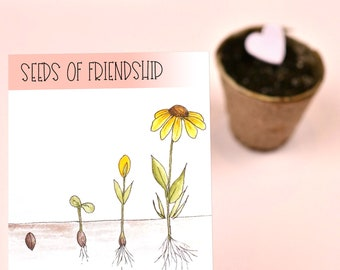 Friendship Seeds Wildflower Packets for 5 Students