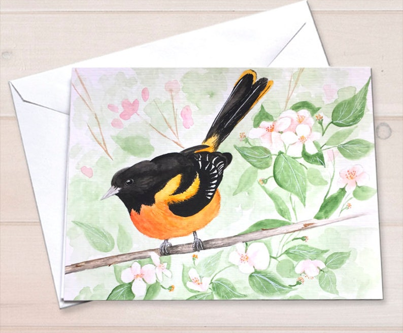 Baltimore Oriole notecards image 0